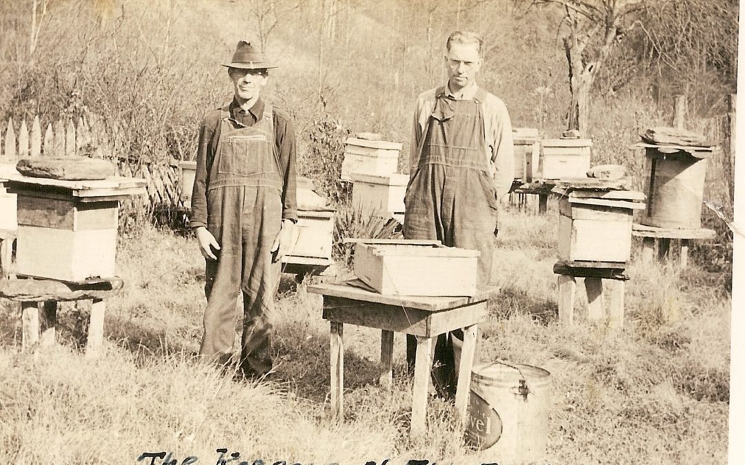 Keepers of the Bees